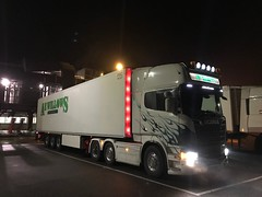 Scania R560 with Schmitz fridge - Photo of Schweighouse-sur-Moder