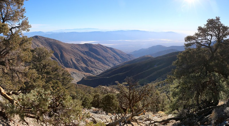 Looking east into Hanaupah Canyon from the Telescope Peak Trail