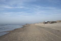 Daytrip Texel