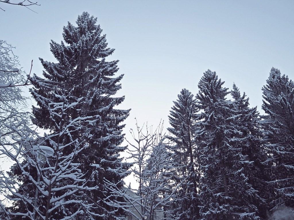kuopio jouluaatto
