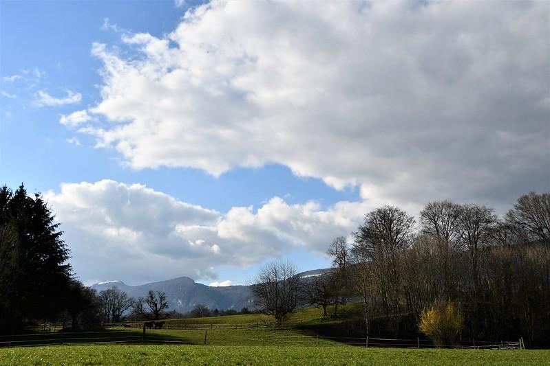Clouds 19.03 (1)