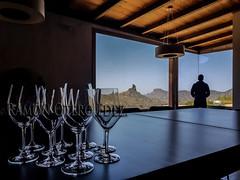 Bodegas y Vinos / Wines and Wineries