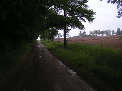 20080515 22941 0905 Jakobus Weg Wald Feld - Photo of Saint-Sixte