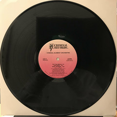 CRIMINAL ELEMENT ORCHESTRA:PUT THE NEEDLE TO THE RECORD(RECORD SIDE-B)