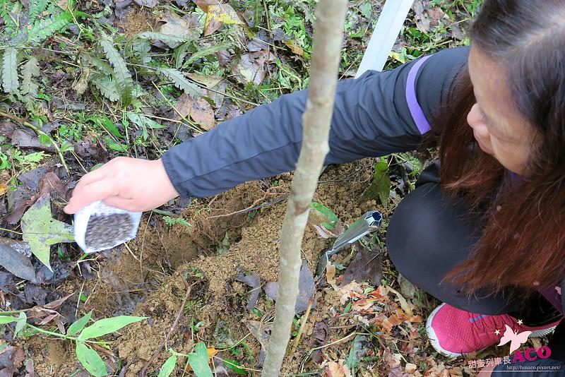 延伸島嶼生命綠 花蓮護樹IMG_5213