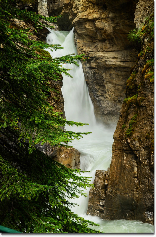 Johnston Canyon Falls (lower) (1)