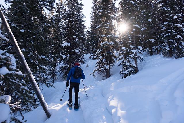 Snowshoeing - Gypsum Ridge - Feb 2019-6