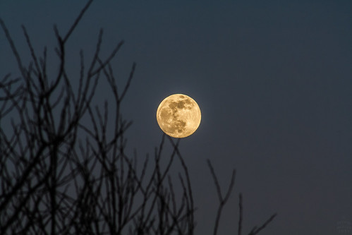 The Moon / @ 300 mm / 2019-02-18