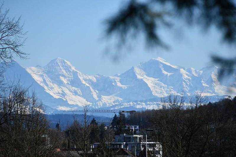 Alps 16.03 (2)
