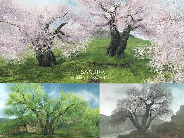 HPMD* Sakura -Cherry Blossom Tree-