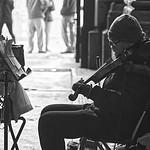 Street Musician - Busking