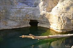 Aux cascades du sautadet