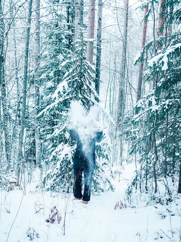 PC244956, new year, uusivuosi, forest, metsä, lumi, snow, finland, suomi,