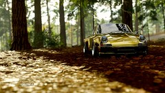 Porsche Carrera RS  / FH4