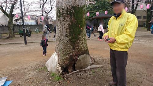 20190331 春日公園(春日神社)