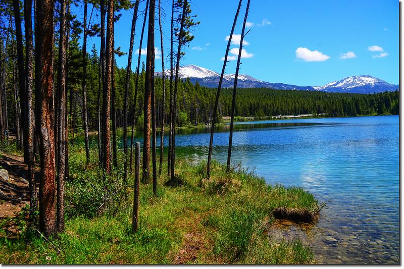 Herbert Lake (4)
