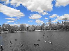 Silver Lake Park - April 10 (2)
