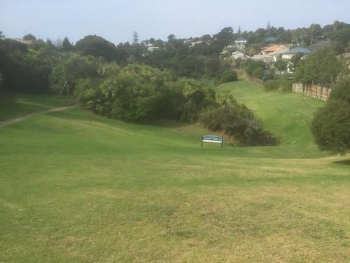 Rona Park 3