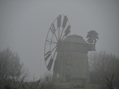 20110316 0203 257 Jakobus Eckartsberga Nebel Bäume Windmühle
