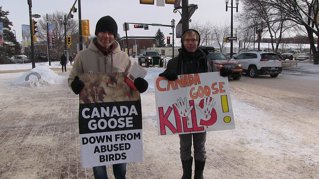 National Anti Fur Day Edmonton