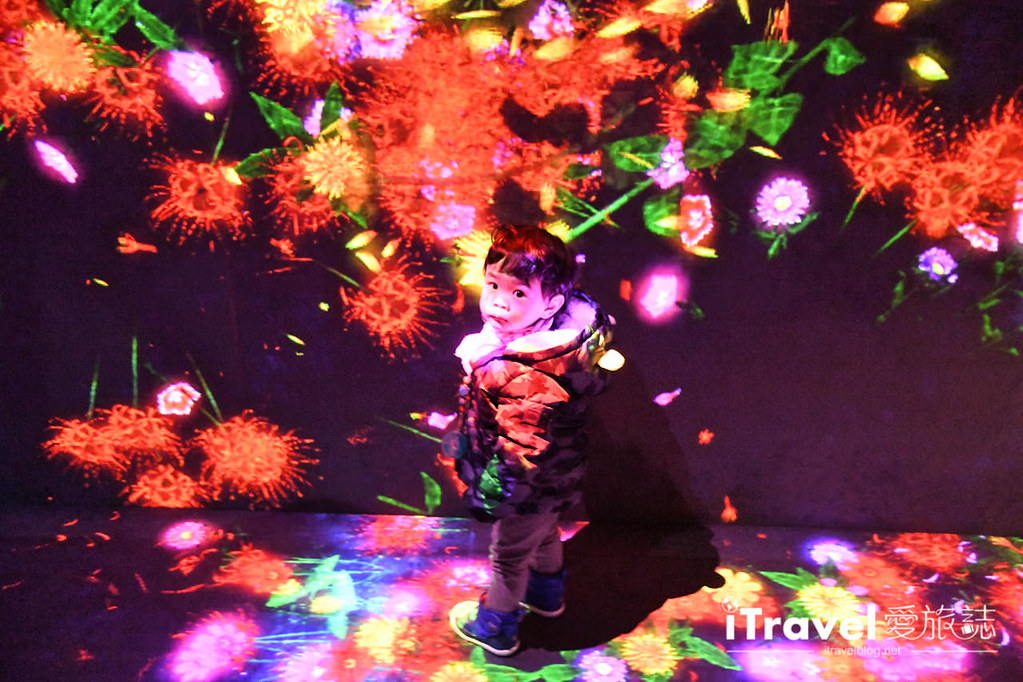 东京艺术展览 teamLab Borderless (20)