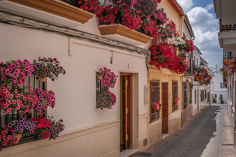 Cabra Andalucia