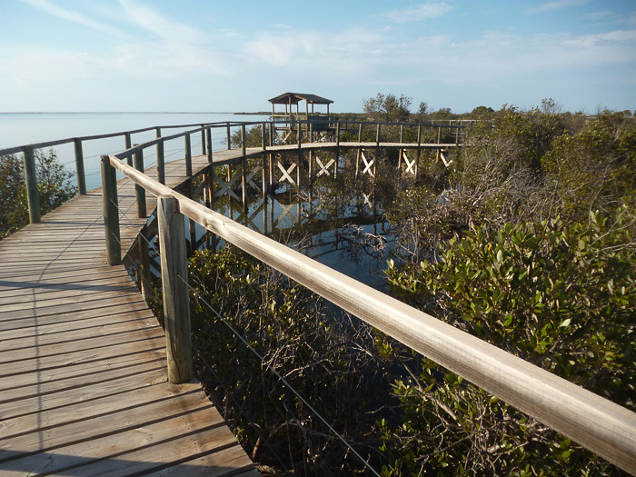 Cowell Mangrove Boardwalk