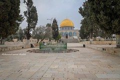 The beautiful Dome of the Rock in Al Aqsa sanctuary in occupied Jerusalem