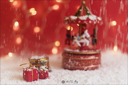 51 Navidad 52