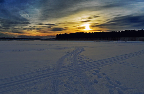Another day... but the same snow ;-))) Winter 2019. Finland
