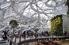 Inside Amazon's Spheres