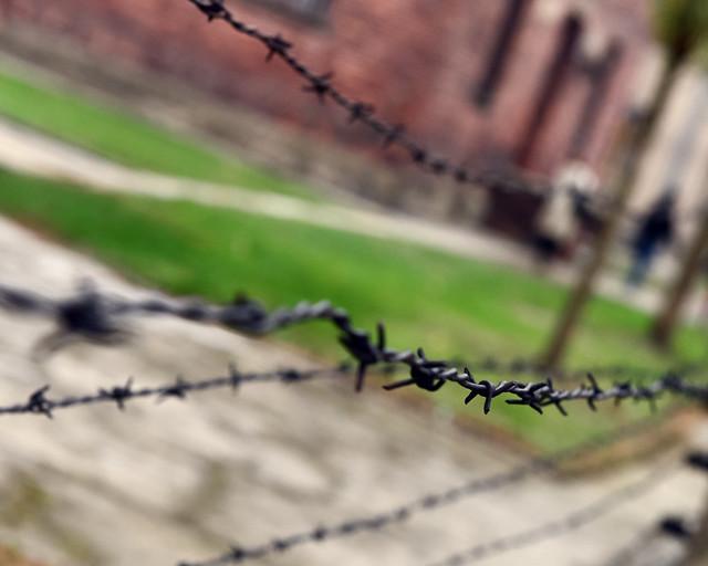 Detalle de una de las alambradas de Auschwitz