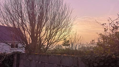 sunrise ireland
