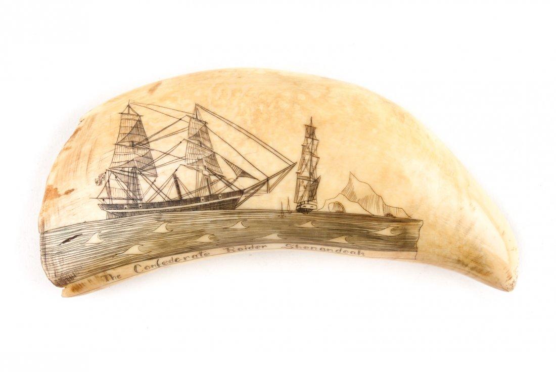 Scrimshaw whalebone carving of CSS Shenandoah, circa 1869.