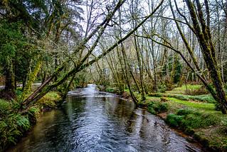 North Nemah River, OR