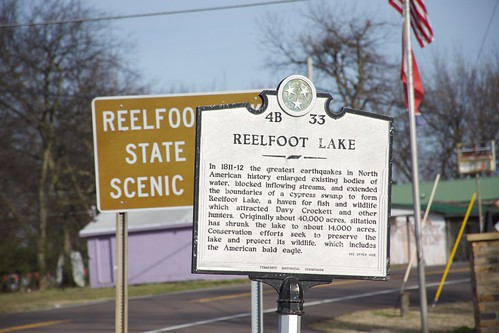 Reelfoot Lake 4B 33