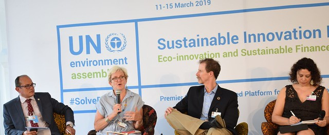 Polly Ericksen speaking in a session at the fourth biennial United Nations Environment Assembly (UNEA), held 11-15 March in Nairobi