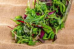 Salad mix and arugula on a background of burlap