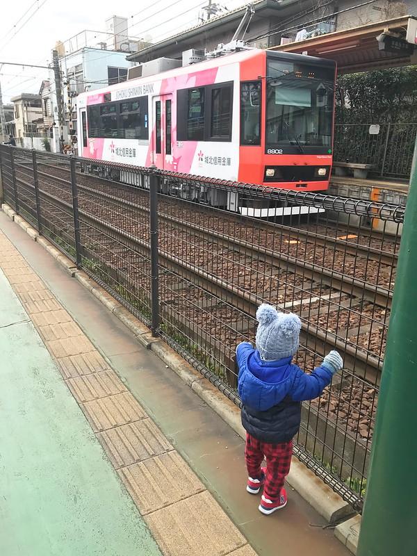 東京さくらトラム(都電荒川線)のトレインビュースポット