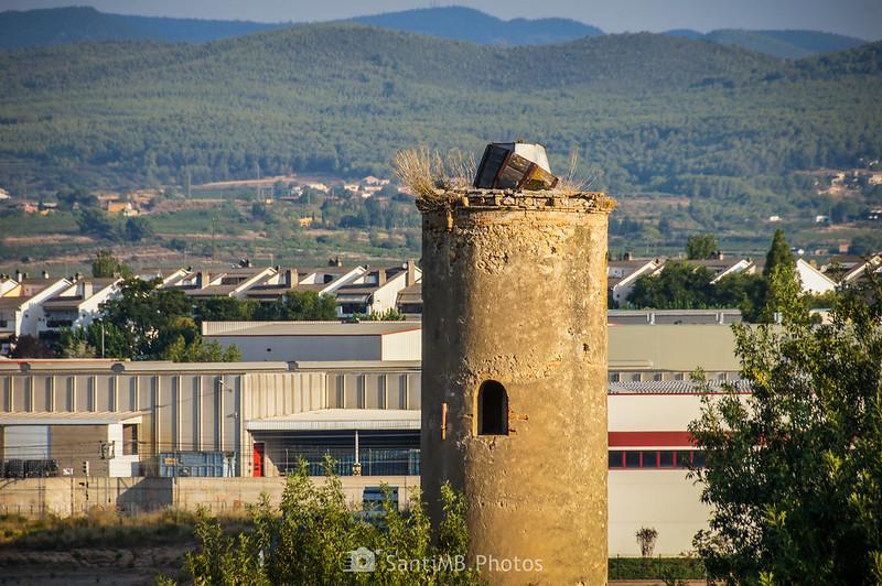 Antigua torre dentro del recinto del Castell de Penyafort