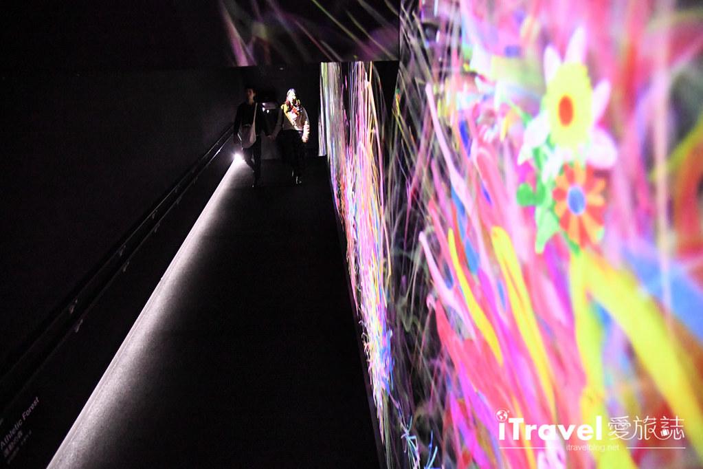 东京艺术展览 teamLab Borderless (44)