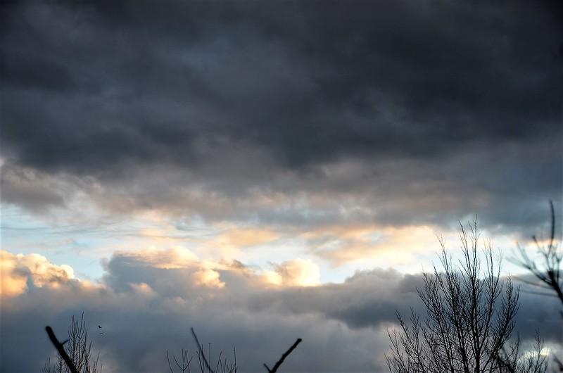 Afternoon sunset 17.01 (2)