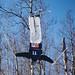 Judy Jackson-2019February18Freestyle Skiing Moguls-0298.jpg