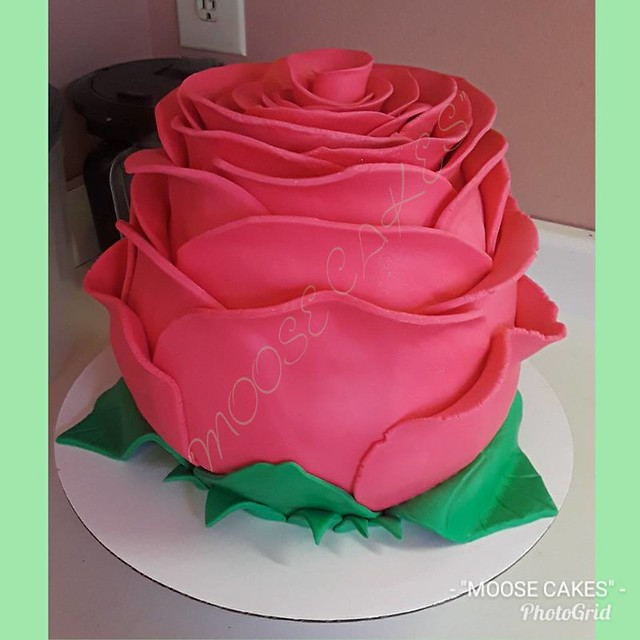 Giant Rose Cake by Moose Cakes