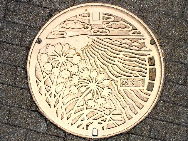 Fukube Tottori, manhole cover (鳥取県福部村のマンホール), Panasonic DMC-LZ2