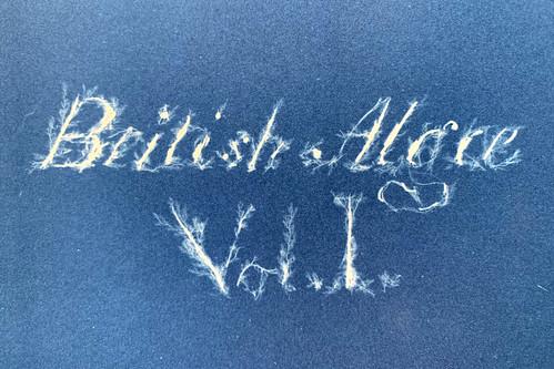 BritishAlgae copy