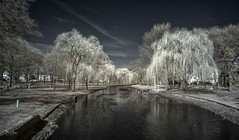 Hendrickson Park IR