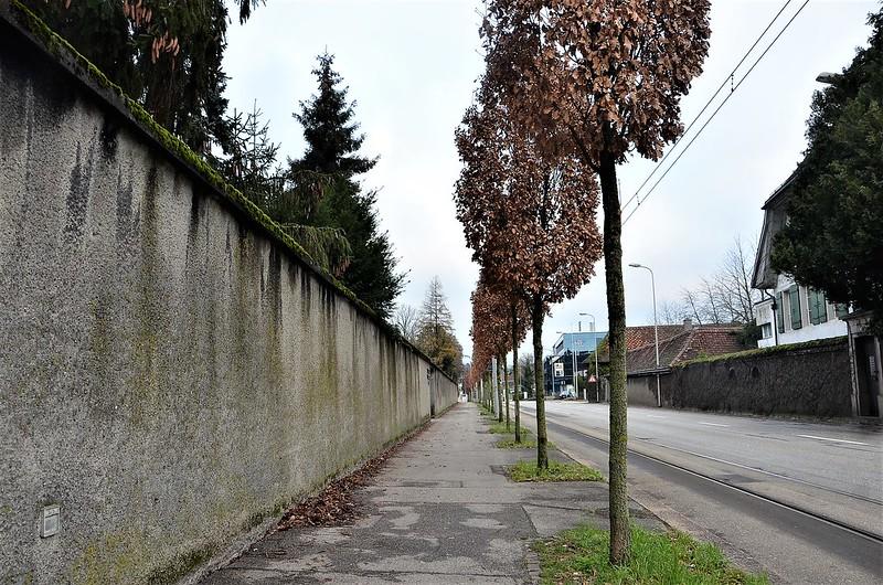 Baselstrasse 25.12 (2)