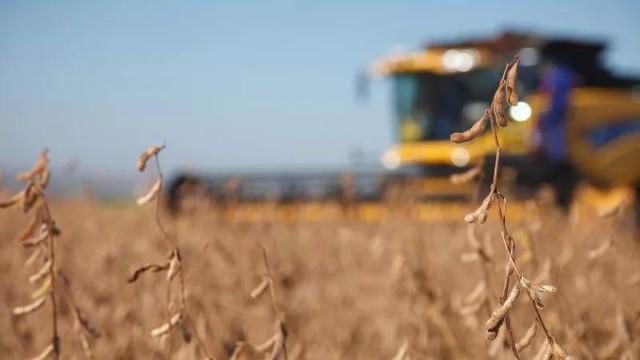 Atualmente, 2.152 produtos elaborados com agrotóxicos estão em circulação no Brasil - Créditos: Monsanto/Reprodução