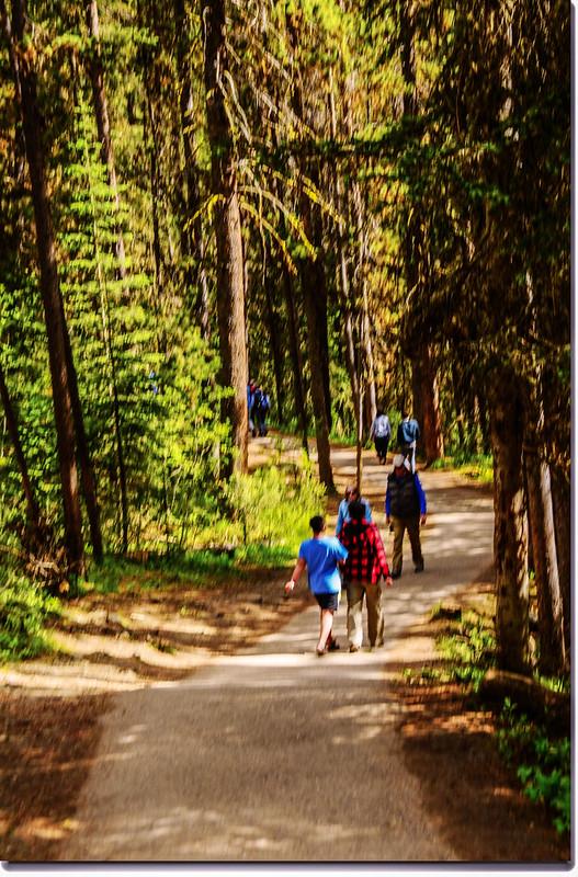 Johnston Canyon Trail (2)
